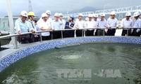 Kiểm tra tiến độ các công trình bảo vệ môi trường tại Dự án Formosa Hà Tĩnh