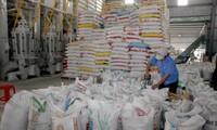 Việt Nam trao tặng 5000 tấn gạo cho Cuba