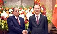 Trang sử mới trong quan hệ Việt Nam - Ai Cập