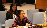 Việt Nam chủ động, tích cực tham gia các hoạt động gìn giữ hòa bình của Liên hợp quốc