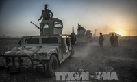 Iraqi, Libyan forces free key areas from IS