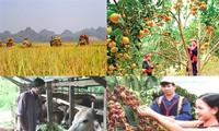 Tận dụng cơ hội để kinh tế tăng trưởng bền vững