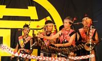 Một số nhạc cụ tiêu biểu của người Bana