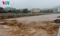 Các địa phương nỗ lực phòng chống lụt bão