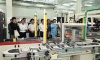 Việt Nam và Nhật Bản thúc đẩy hợp tác về khoa học-công nghệ