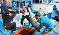 Khánh Hòa kêu gọi đầu tư từ các nền kinh tế thành viên APEC