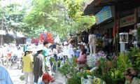 ตลาดห่าง-ตลาดนัดชนบทในตัวเมืองไฮฟอง