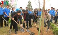 จังหวัดต่างๆจัดเทศกาลปลูกต้นไม้เพื่อรำลึกถึงบุญคุณของประธานโฮจิมินห์