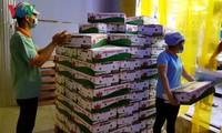 Việt Nam xuất khẩu lô thanh long tươi đầu tiên sang Australia