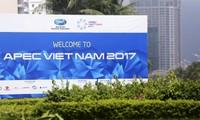 Hội nghị thượng đỉnh Lãnh đạo doanh nghiệp APEC 2017