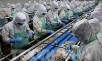 Công nghiệp chế biến thực phẩm Việt Nam có nhiều dư địa phát triển