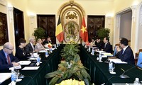 Tham vấn chính trị giữa Việt Nam và Bỉ