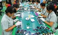 Việt Nam xuất siêu 2,8 tỷ USD trong 11 tháng qua