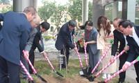 Đài TNVN tiếp nhận 100 cây hoa anh đào do Trường tiếng Nhật Kairinjuku trao tặng