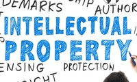 11 years of Law on Intellectual Property enforcement in Vietnam