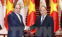 Egypt wants to boost cooperation with Vietnam