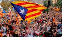 Constitution must be respected for Spain's unity: spokesperson