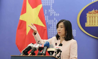 Vietnam Foreign Ministry discusses citizen protection