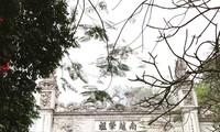 ទំនៀមទម្លាប់សែនខួបស្តេច Hung របស់ជនជាតិ ភាគតិចនៅខេត្ត Phu Tho