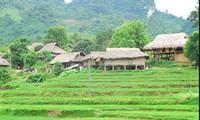 Путешествие по провинции Лайтяу