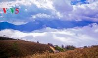 Облачный Тэйбак – райский уголок на земле