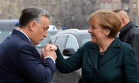Germany not to supply weapons to Ukraine