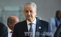 EU: boosting Algeria-EU relations