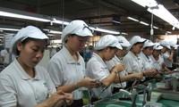 WBให้คำปรึกษาเวียดนามในการยกระดับทักษะความสามารถของแรงงาน