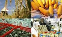 มูลค่าการส่งออกผลิตภัณฑ์การเกษตร ป่าไม้และสัตว์น้ำของเวียดนามบรรลุกว่า๒หมื่น๕พันล้านเหรียญสหรัฐ