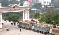 การส่งออกผลิตภัณฑ์การเกษตรและป่าไม้-สัญญาณในทางบวกจากจุดผ่านแดนนานาชาติลาวกาย