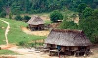 ชาวเวินเกี่ยวอนุรักษ์สถาปัตยกรรมบ้านเรือนไม้โบราณ