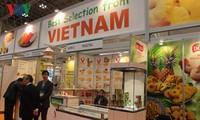 ตลาดเวียดนามดึงดูดความสนใจจากบรรดาสถานประกอบการออสเตรเลีย