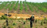 สหรัฐให้การช่วยเหลือเวียดนามแก้ปัญหากับระเบิกที่หลงเหลือหลังสงคราม