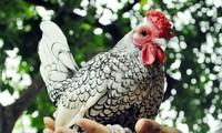 ตรุษเต๊ตปีระกามาคุยเรื่องของไก่