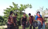 ชนกลุ่มน้อย ปาโก