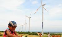 REDP, 베트남에 ODA의 2억4백만 달러 지원