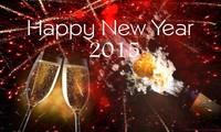 Новогоднее поздравление от генерального директора  радио «Голос Вьетнама»