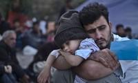 Турция предложила план по разрешению миграционного кризиса