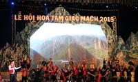 На плоскогорье Донгван провинции Хазянг впервые проходит праздник гречихи