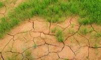 Реализовано Парижское соглашение по климату в центральной части Вьетнама и на плато Тэйнгуен