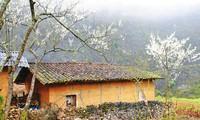 Архитектурный стиль домов народности Монг