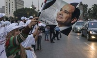 Egypt's election: el-Sisi wins 94.5% of expat vote