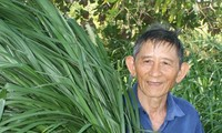 Cow-herd Ho Giao - Vietnam's farming hero