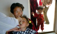 South Korean NGOs ship humanitarian aid to North Korea