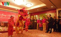 Overseas Vietnamese attends Tet get-togethers in Panama, Japan, Egypt