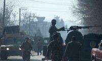 Afghanistan suicide bombing kills 14