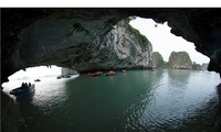 Kong: Skull Island shooting in Quang Ninh province begins