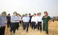Deputy Prime Minister inspects drought mitigation efforts in Gia Lai