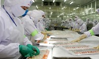 Vietnam, South Korea boost cooperation in food processing