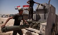 Iraqi forces retake southern Fallujah from Islamic State